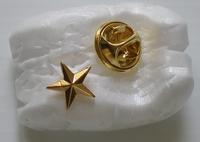 Pin Étoile