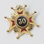 Bijou Broche Croix 30ème degré REAA